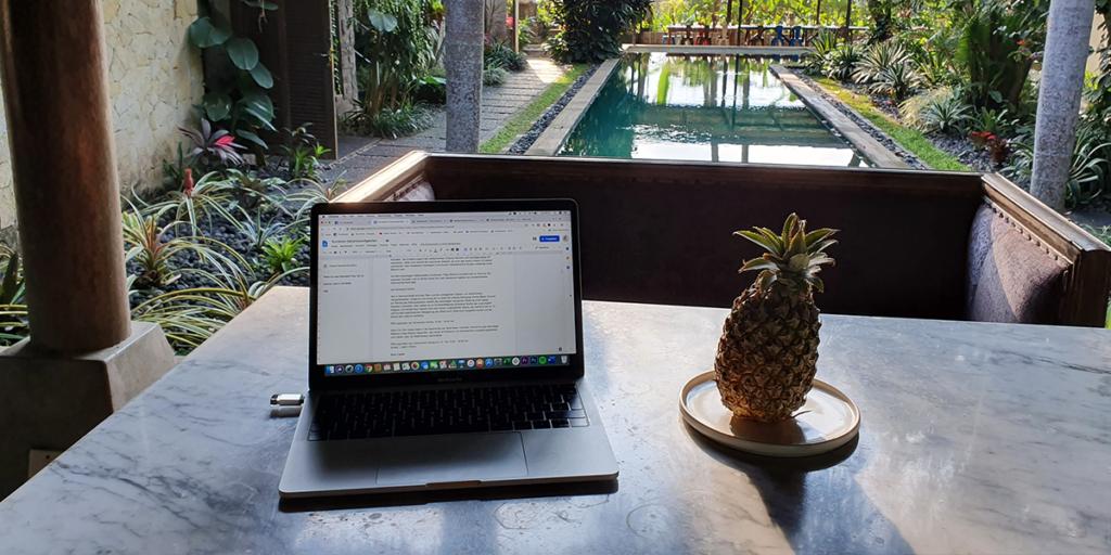 Ortsunabhängig als Digitaler Nomade arbeiten_ Laptop und Ananas Bali